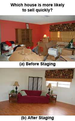 250x400 Before & After Staging